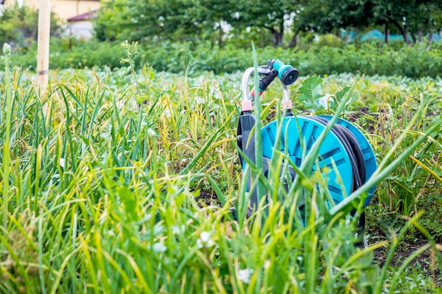 Een afbeelding van een tuinslang. slang voor irrigatie