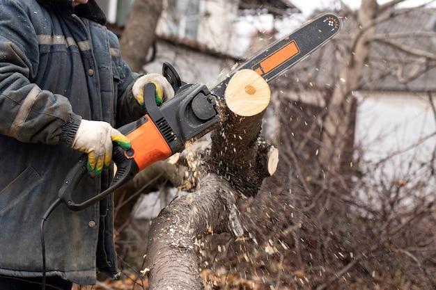 Een arbeider houdt een kettingzaag vast en zaagt een boom. zaagsel vlieg.