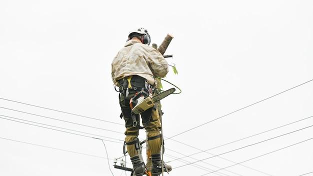 Een arbeider met helm werkt op hoogte in de bomen. klimmer op een witte muur. boomkweker man snijdt takken met een kettingzaag en gooit deze op de grond. houthakker werkt met een kettingzaag.