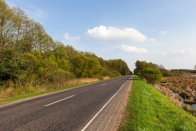 Een asfaltweg met aan de zijkanten een bos met bomen en een veld met landbouwgewassen