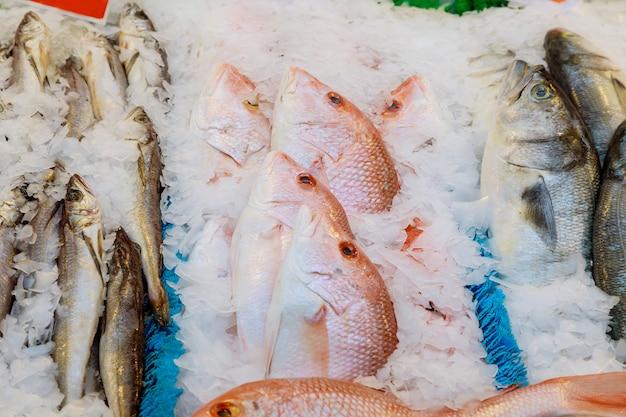 Een assortiment van vis en schelpdieren van verschillende tinten.