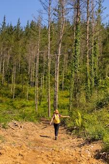Een avontuurlijke wandelaar die langs een pad loopt naast enkele pijnbomen
