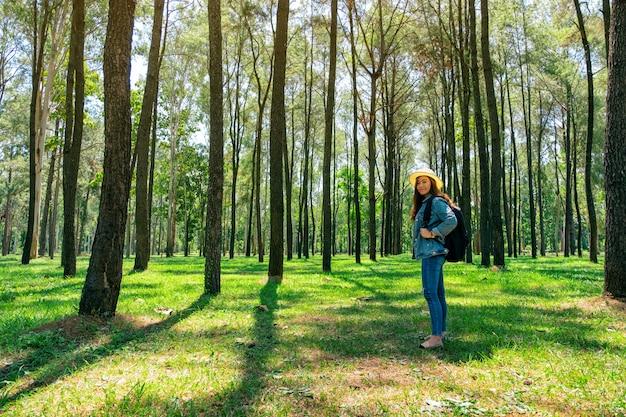 Een aziatische vrouwelijke reiziger met een hoed en rugzak staande in een prachtig dennenbossen