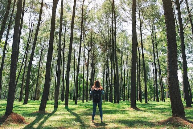 Een aziatische vrouwelijke reiziger met rugzak die en een mooi dennenbos achteruitgaan onderzoeken