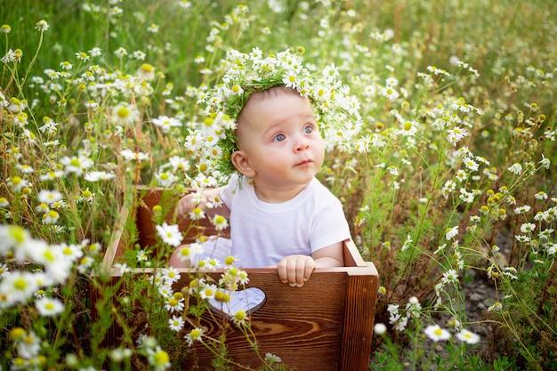 Een baby in bloemen op een kamilleveld in de zomer in een witte jurk en een krans op zijn hoofd