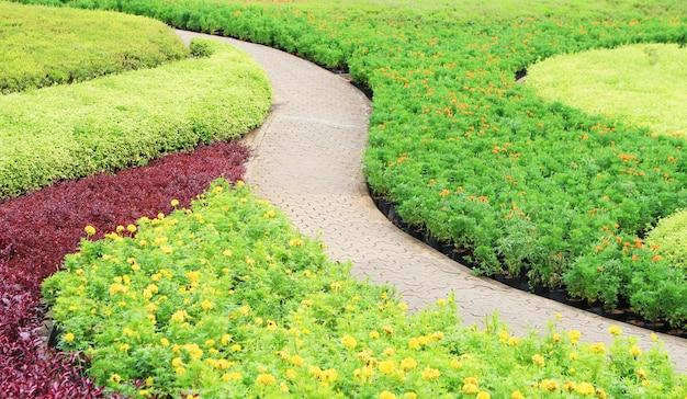 Een baksteen stenen pad in de tuin