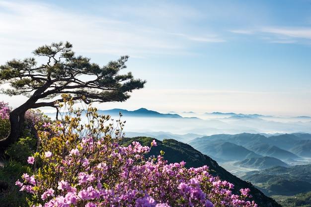 Een bergscène vol wolken en bloemen