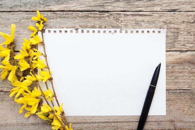 Een blanco vel notitieblok voor notities. lente takken en pen. bespotten voor tekst