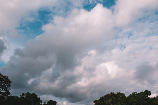 Een blauwe lucht met wolken en groene bomen achtergrond