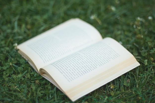 Een boek op het gras