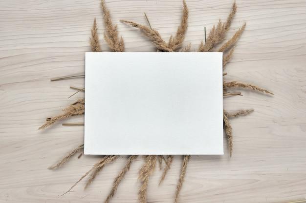 Een boeket aartjes. frame van droog riet geïsoleerd op een witte achtergrond. sjabloon mockup blanco papier. abstracte droog gras bloemen, kruiden op houten tafel op pastel beige achtergrond. stijlvolle woondecoratie
