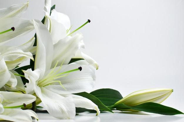 Een boeket lelies op een witte achtergrond ligt