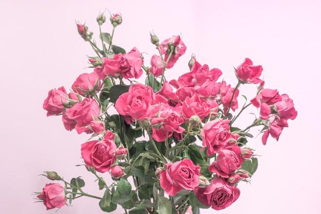 Een boeket pastelroze rozen op een lichte achtergrond, een sjabloon voor ansichtkaarten, stoffen, behangpapier