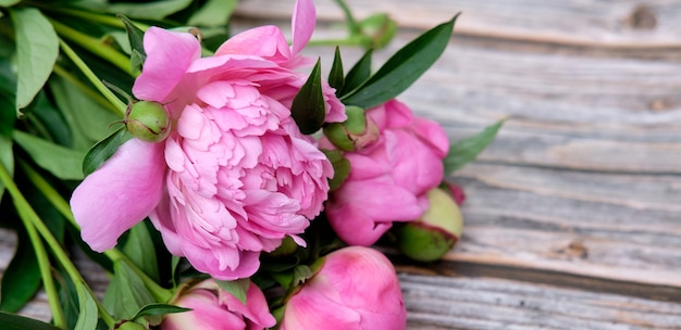Een boeket roze pioenrozen in lijn op een donkere houten ondergrond