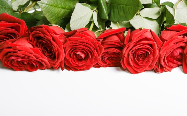 Een boeket van dieprode rozen op een witte achtergrond met een kopie van de ruimte.