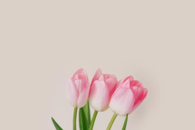 Een boeket van drie roze tulpen. het concept van de voorjaarsvakantie met kopieerruimte