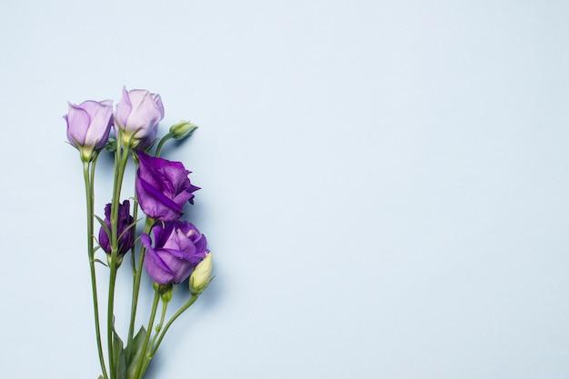 Een boeket van paarse en witte bloemen op een lichtblauwe achtergrond