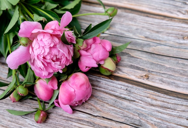 Een boeket van roze pioenrozen bloeien