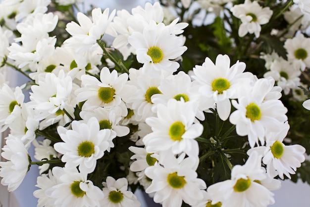 Een boeket van witte daisy-achtige chrysanten bovenaanzicht