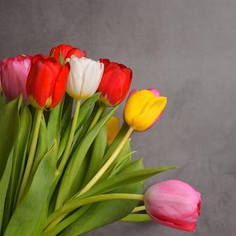 Een boeket verse, heldere, veelkleurige tulpen op een grijze achtergrond.