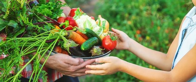 Een boer en een kind houden een oogst groenten in hun handen