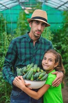 Een boer en een kind houden een oogst komkommers in hun handen