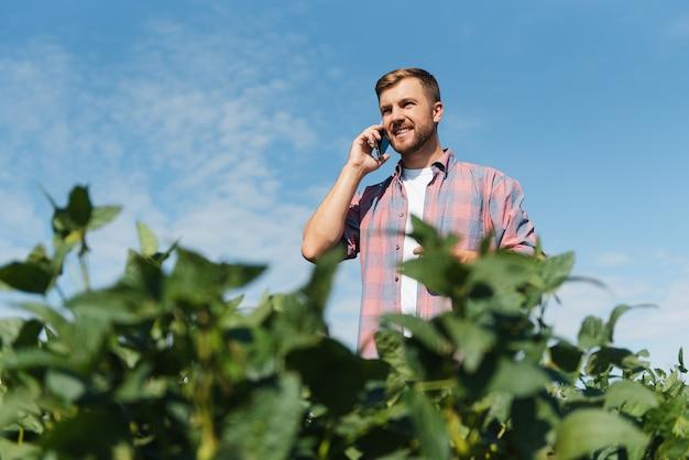 Een boer inspecteert een groen sojabonenveld. het concept van de oogst
