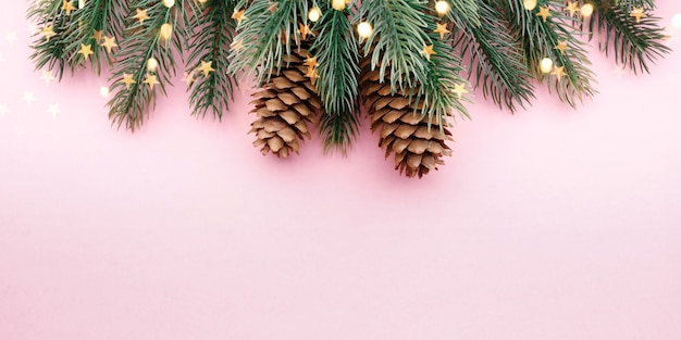 Een boomtak met kegels op een roze achtergrond
