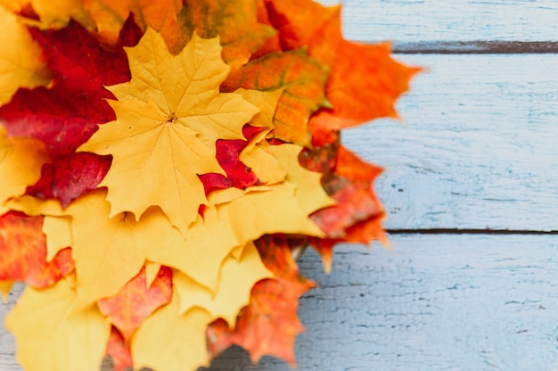 Een bos rode en gele droge esdoornbladeren in de herfst op een blauwe houten achtergrond