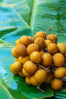 Een bos van longantakken op een achtergrond van groen banaanblad. vitaminen, fruit, gezond voedsel