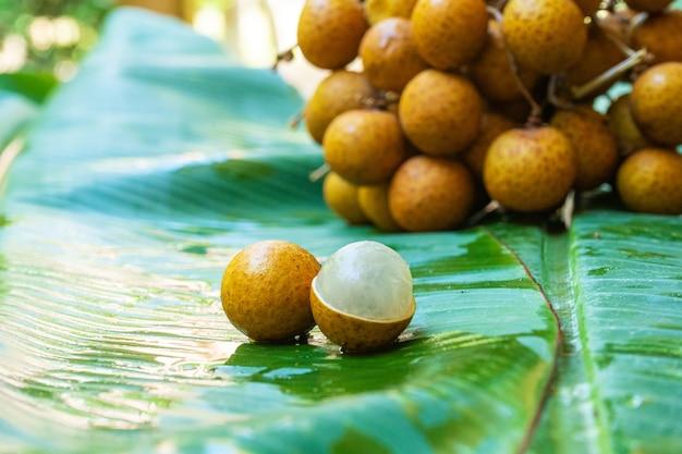 Een bos van longantakken op een achtergrond van groen bananenblad. vitaminen, fruit, gezond voedsel.