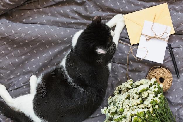 Een bovenaanzicht van kat zitten in de buurt van de wenskaarten; string spool; pen en bloemboeket op grijze kleding