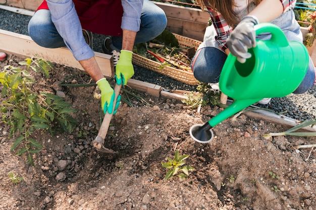 Een bovenaanzicht van mannelijke en vrouwelijke tuinman die de grond graven en de plant water geven