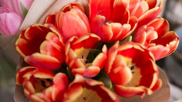 Een bovenaanzicht van rode tulp bloemen