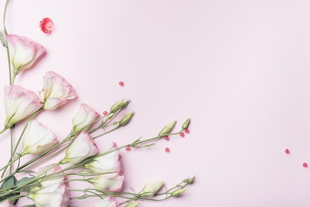 Een bovenaanzicht van verse bloemen met rode parels op roze achtergrond