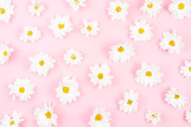 Een bovenaanzicht van witte bloem patroon op roze achtergrond