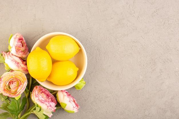 Een bovenaanzicht verse citroenen zure rijpe hele zachte citrus tropische vitamine geel samen met gedroogde bloemen op de crème bureau