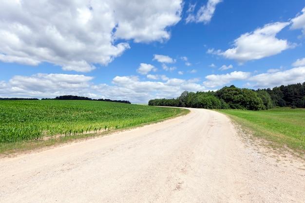 Een brede landweg van zand en grind, loopt door economische velden en bos, zomerlandschap