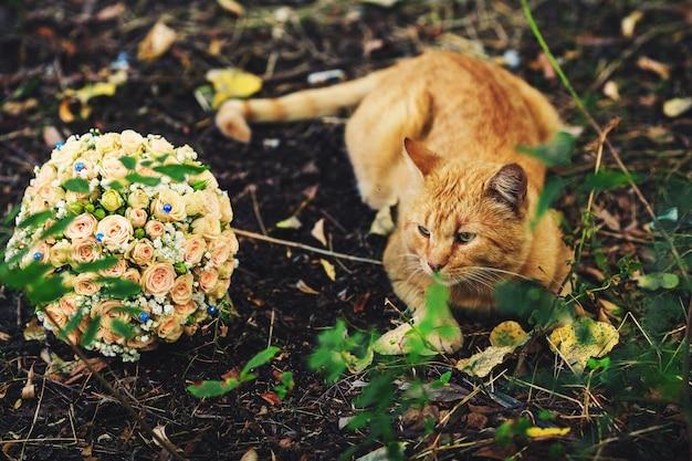 Een bruidsboeket van pastel rozen met blauwe strass steentjes en lint ligt op de grond, en naast een rode kat