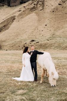 Een bruidspaar en een crèmekleurig paard met chique manen. een paard eet gras dat de bruidegom omhelst