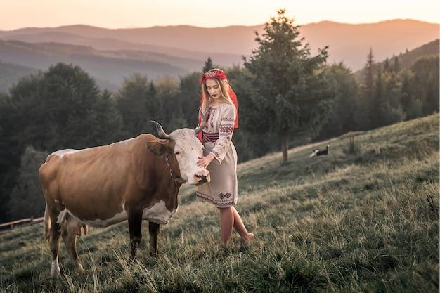 Een bruine melkkoe graast op groen gras in een vredig berglandschap.
