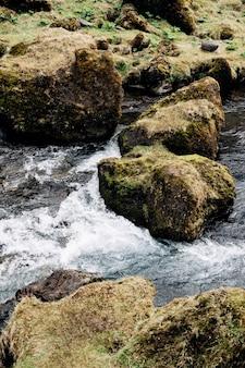Een close-up van de stroom van het water van de bergrivier groengeel gras en stenen