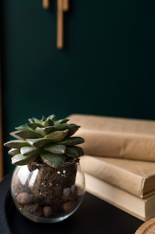 Een close-up van een bloem staat in een kleine transparante glazen vaas op de tafel naast de boeken. hoge kwaliteit foto