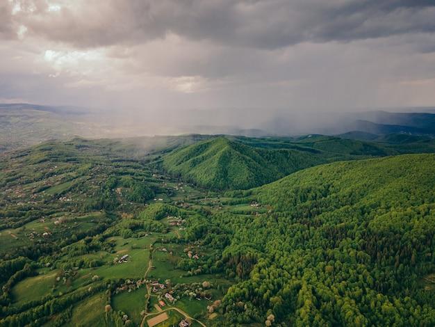 Een close-up van een weelderige groene heuvel