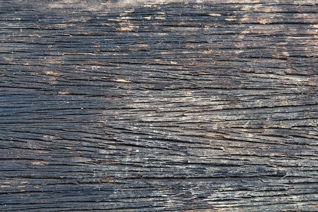Een close-up van het oppervlak van de oude snit van de boom