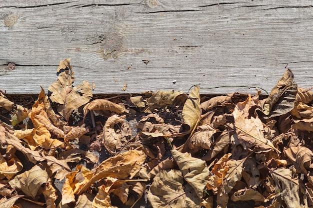 Een deel van het oude grijze bord met droge bladeren