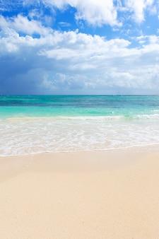 Een deel van het strand in de caribische zee in mexico