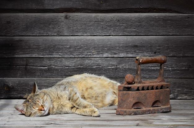 Een dikke kat bevindt zich naast een zwaar en roestig oud steenkoolijzer op een houten oppervlak