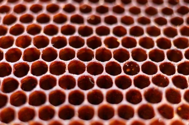 Een donkere close-up van de bijenhoningraat
