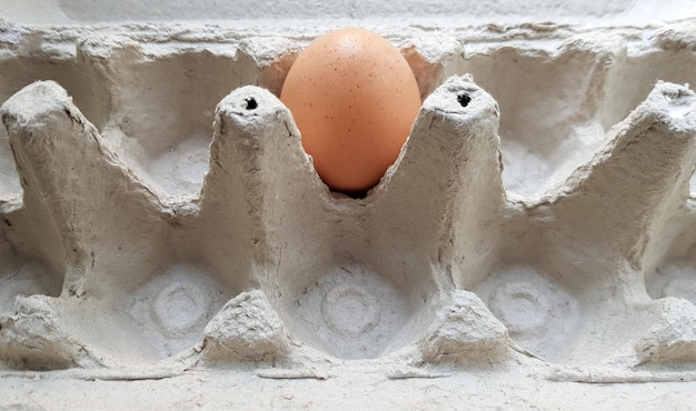 Een ei in een pakket close-up. eenzaam kippenei in een dienblad.